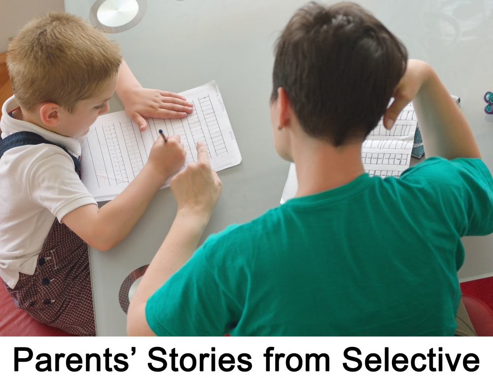 PDF - Parents' stories from selective areas in England