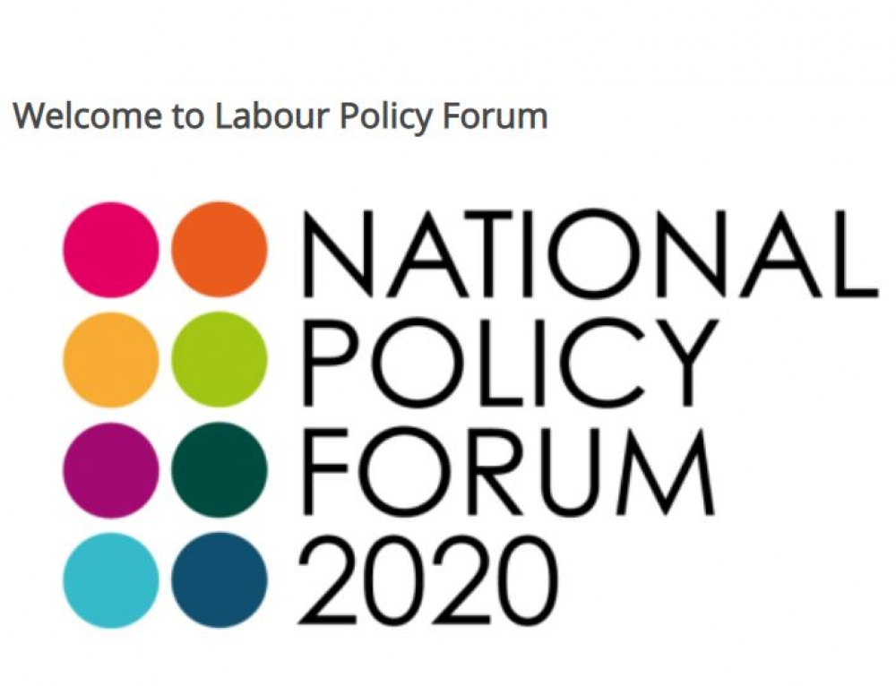 Comprehensive Future's submission to the Labour Policy Forum